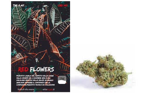 red-flowers-bronze