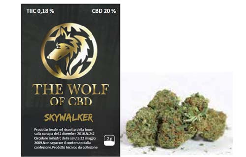 skywalker erba
