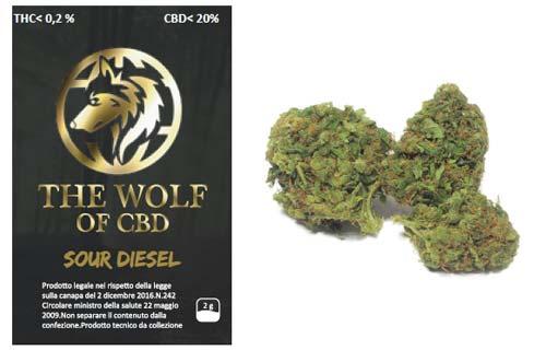 sour-diesel-full